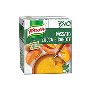 BUY KNORR BIO SOUP PUMPKIN CARROT 300ml ONLINE UK